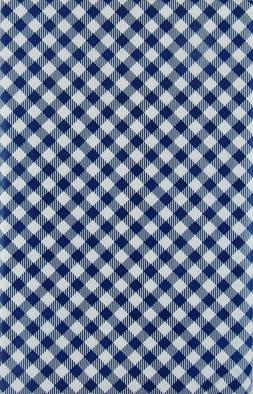 Blue Gingham Check Vinyl Tablecloth Summer Fun Outdoor Picni